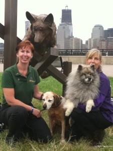 9/11 Ten Year Working Dog Memorial Liberty State Park (2011)