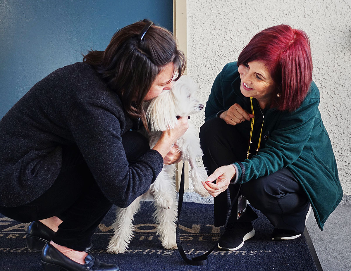 Amber Lancaster Entourage deployments – hope animal-assisted crisis response